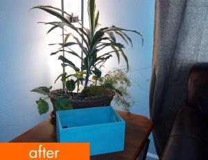 Living_Room_After_08 copy